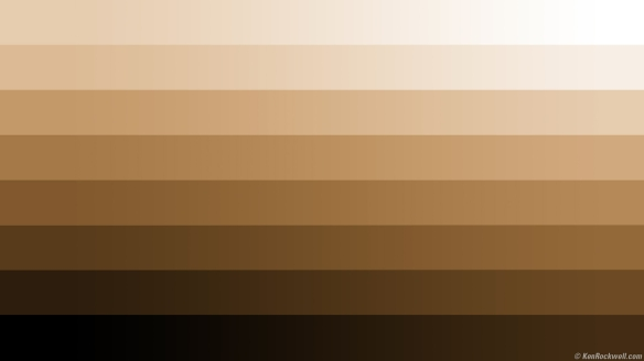 different-shades-of-brown